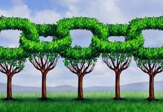 Естественная ссылка. 10 основных признаков естественной ссылки.